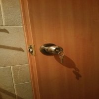 כיוון דלת פלדלת